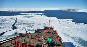 arctic-shelf-600