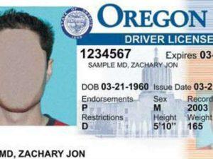 Sample Oregon driver license_1499449476339_9995974_ver1.0